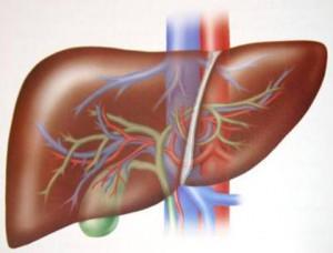 Fegato,-depurazione-e-rimedi-naturali
